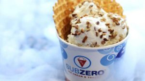 Sub Zero Ice Cream Coming to Georgia