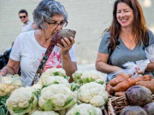 Alpharetta Farmers Market @ Old Canton Street in Downtown Alpharetta | Alpharetta | Georgia | United States
