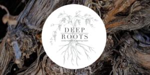 Deep Roots Wine Market & Tasting Is Open