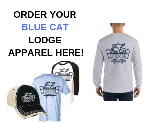 Shop Blue Cat Lodge apparel at ScoopOTP