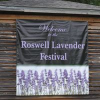 Roswell Lavender Festival @ Barrington Hall