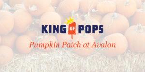 King of Pops Pumpkin Patch @ Avalon